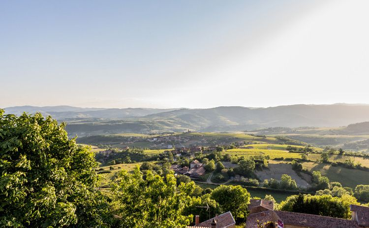 Beaujolais & Perouges - Half Day Tour