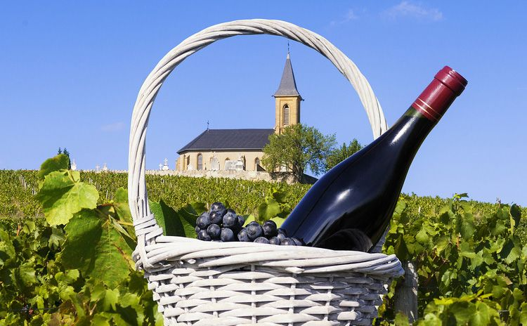 Wine Tour Bordeaux Médoc - Full Day Tour