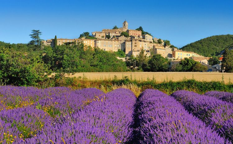 Taste of Provence - Full Day Tour